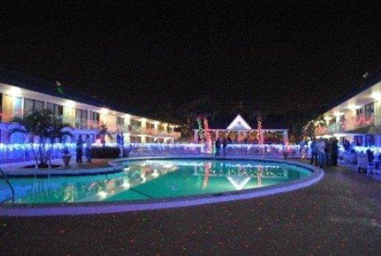 Flamingo Resort: Res Pool