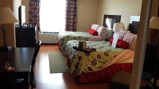 Hotel Indigo Albany-Latham : My room