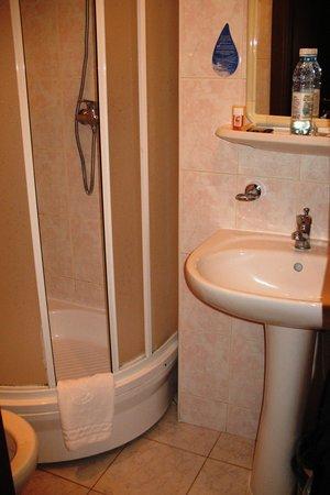 Premier Hotel Lybid: Bathroom