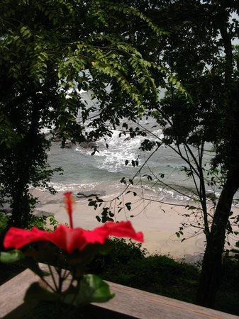The Resort at Isla Palenque : Sleeping this close to the Pacific Ocean was a first!