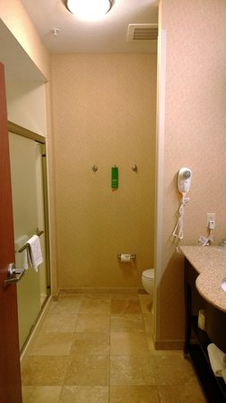 Hampton Inn & Suites St. Louis-Edwardsville: Bathroom