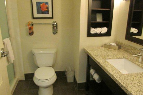 Holiday Inn Express & Suites New Liskeard : Restroom