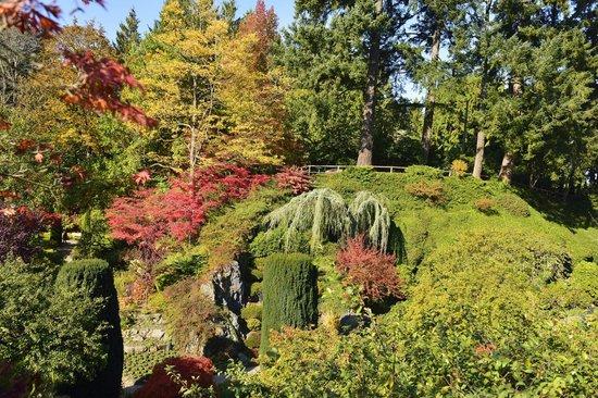 Butchart Gardens: One of the many vistas at Butchart