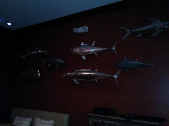 Avenue Inn & Spa: Wall of Fish in Avenue Lounge