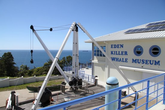 Killer Whale Museum: SeaView