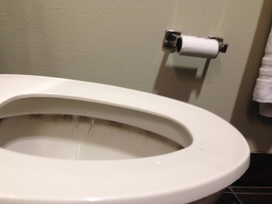 Hawthorn Suites by Wyndham Lubbock: filthy toilet