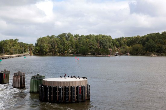 Chippokes Plantation State Park: View from free Jamestown Ferry
