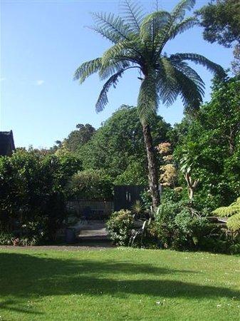 Binnowee Bed & Breakfast : Garden