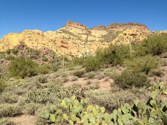 Hieroglyphic Canyon Trail: Desert landscape
