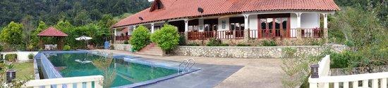 Janda Baik, Malaysia: Pool and terrace