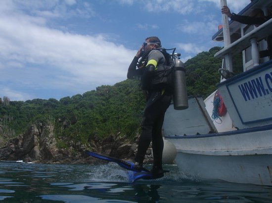 Papagaios Island: Mergulho