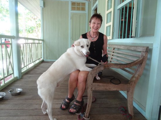 Temple Tree at Bon Ton: JJ the resident dog at on the balcony of Straits Club,Temple Tree.