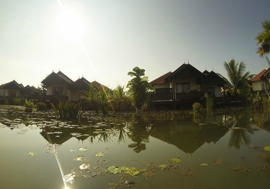 BEST WESTERN Suites and Sweet Resort Angkor: View of the Villas surrounded by the natural pond