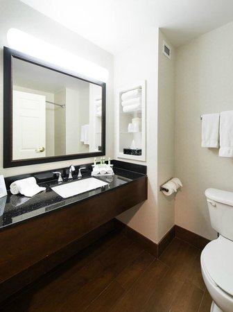 Holiday Inn Express Columbia I-26 at Harbison Boulevard: Guest Bathroom