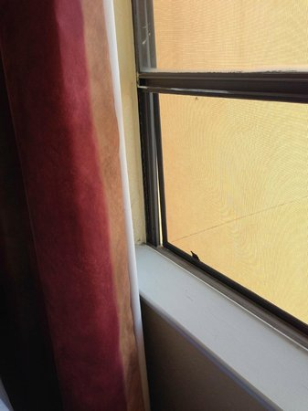 Pan American Inn & Suites: Screen off track
