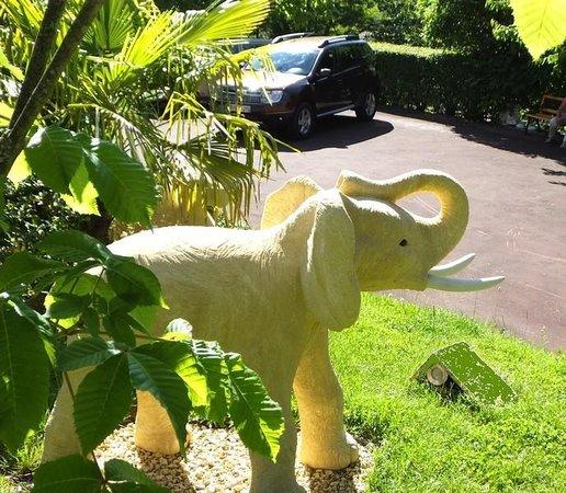 L'Oasis Sarladaise : la maison des elephants