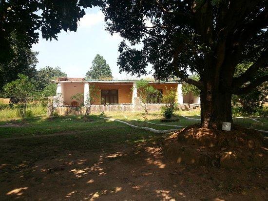 Kanha Village Eco Resort: Eco Cottages
