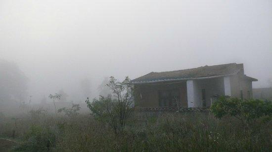 Kanha Village Eco Resort: Foggy Morning
