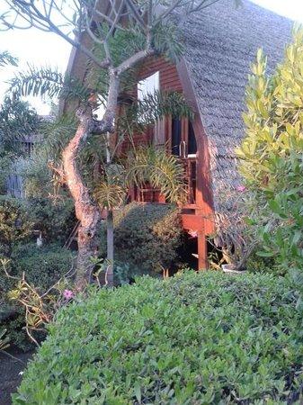 Balenta Bungalows: garden