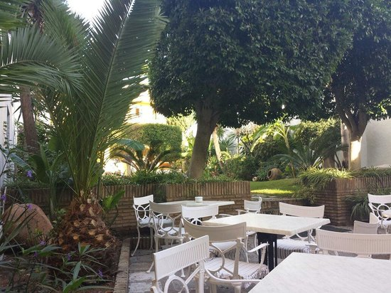 Monasterio De San Miguel Hotel: Der süße kleine Garten im Oktober