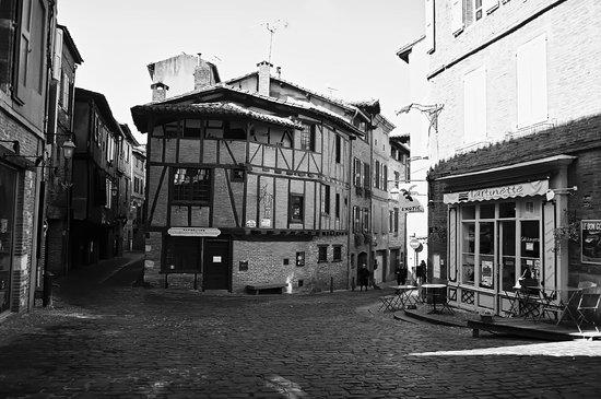 Ibis Albi : VISITE 8