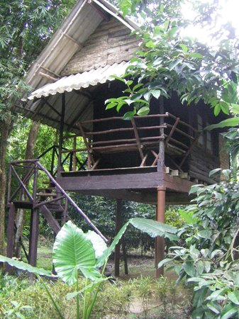 Khao Sok Valley Lodge: Baumhaus