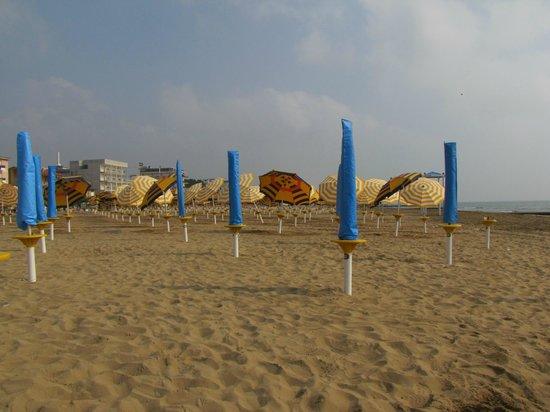 Progresso Hotel: beach