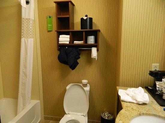 Hampton Inn Elmira/Horseheads: Bathroom