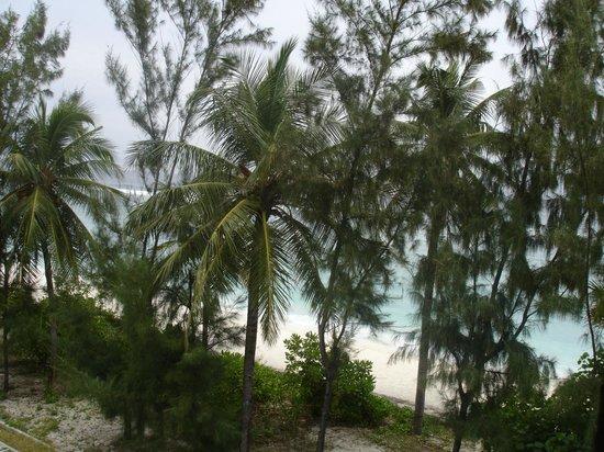 Ripple Beach Inn: View from the balcony, room 205