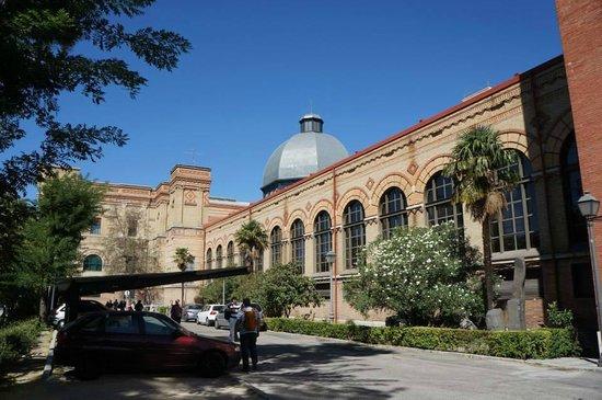 Museo Nacional de Ciencias Naturales (Museum of Natural Sciences): The impressive building.