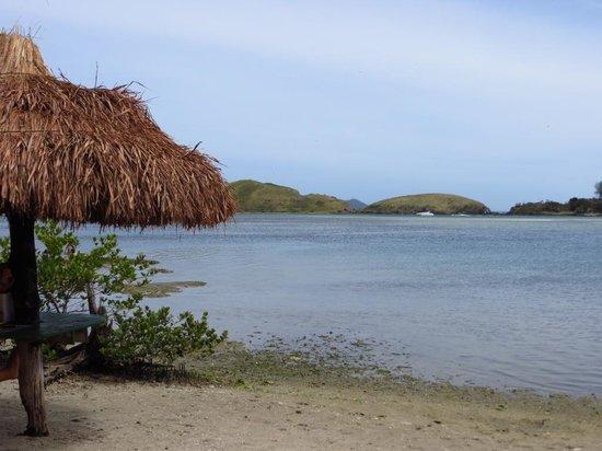 Japones Island : Ilha do Japonês