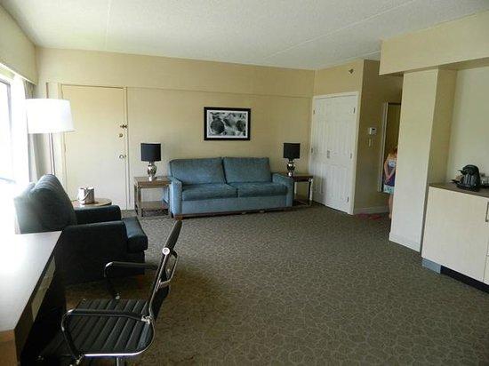 DoubleTree by Hilton Williamsburg: Sleeper sofa