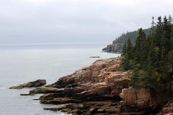 Ocean Trail: Beautiful coast