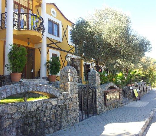 The Olive Tree Restaurant & Bar: Olive Tree Restaurant