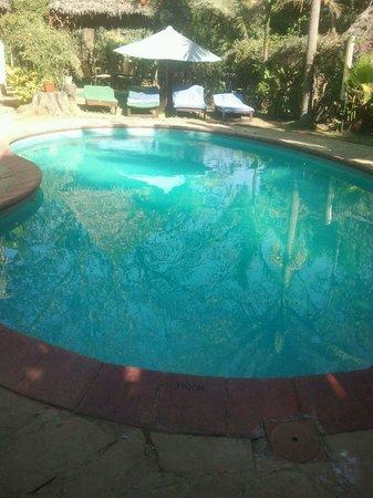 L Oasis Lodge and Restaurant Hotel : Loasis swiming pool