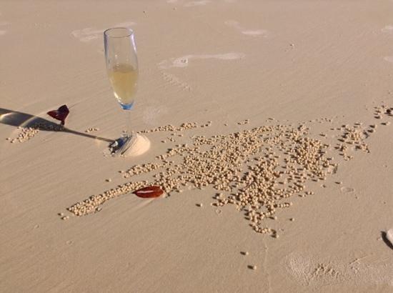Whitehaven Beach : Doesn't it look great