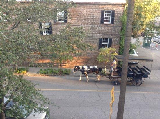 Jasmine House Inn: View from second floor veranda horses heading home