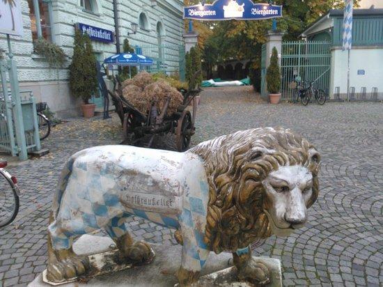 Hofbraukeller: Lion