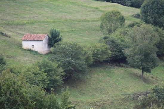 Hotel Rural Montañas de Covadonga: Vistas