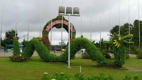 Dalat Flower Park : Далат, парк цветов
