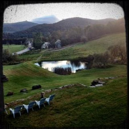 Amee Farm: My View
