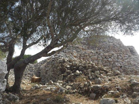 Torre d'en Galmes: first view as you enter