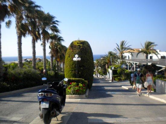 Aldemar Royal Mare Thalasso Resort : Mal entramos no hotel vemos esta maravilha!