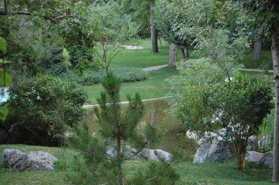 Tachkent, Ouzbékistan : Сад во всей красе