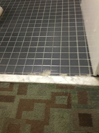 Ramada Westshore Tampa Airport : broken and missing floor tiles