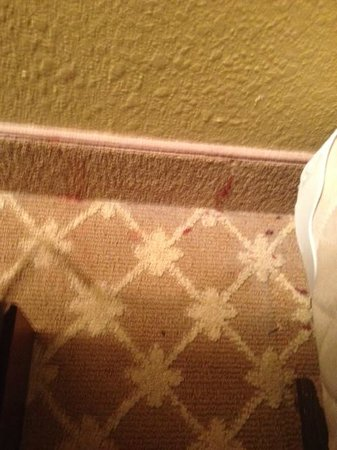 Country Inn & Suites By Carlson, Manteno: red stains next to bed