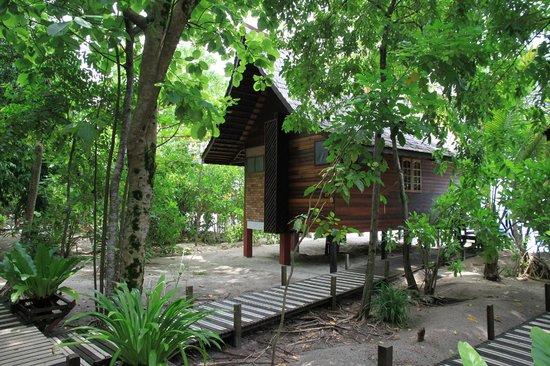 Lankayan Island Dive Resort: Chalet