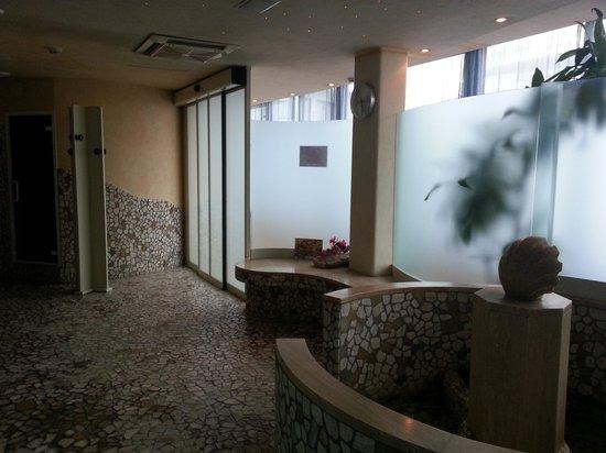 Hotel Le Palme: parte della spa