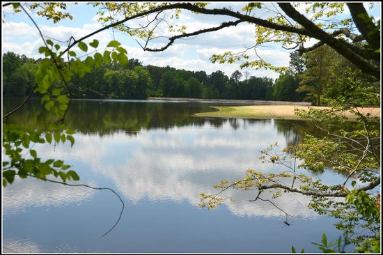 Proffitt's Porch: the lake