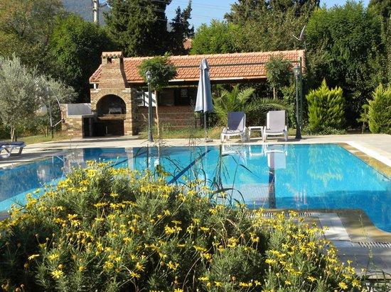 Residence Panion Park: The pool